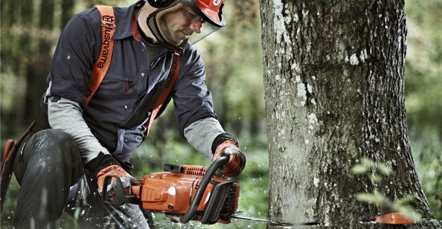 Как правилно да повалим дърво с моторен трион Husqvarna